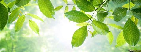 sustain green facebook cover photo fbcovercom