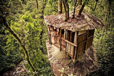 Fantastic Treehouse Village In Costa Rica Others