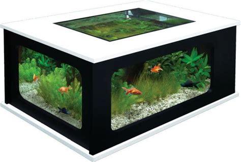 cool aquarium coffee tables icreatived
