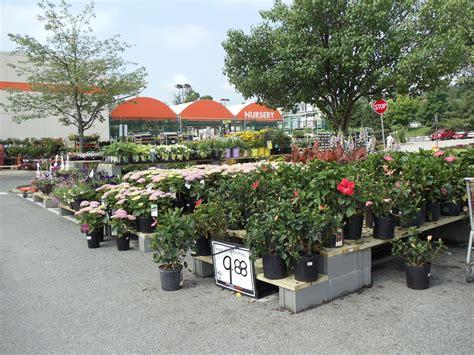 home and garden shop fresh nursery shopping