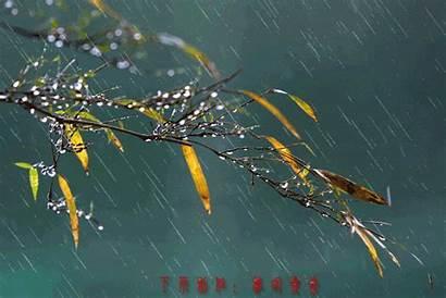 Rain Gifs Funny Verse Mind Training