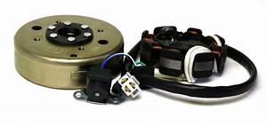 China Roller Tuning : lichtmaschine komplett f r 50ccm 4t china roller gy6 qma ~ Jslefanu.com Haus und Dekorationen