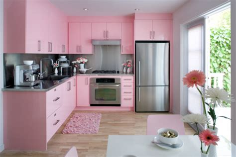 Furniture Hot Pink Kitchen  Modern Kitchens