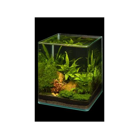 dennerle nano cube 20l complete plus led aquarium set pro shrimp uk