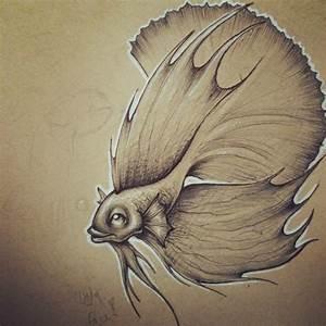 Betta Fish by JordanMendenhall on DeviantArt