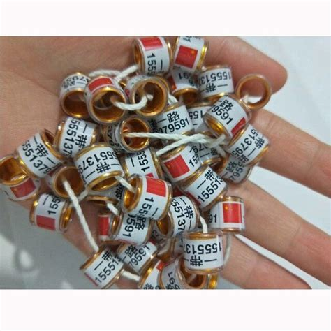 Aliexpress Buy Top Quality Pigeon Rings Band