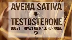 Avena Sativa For Testosterone