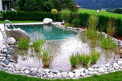 Swimming Pond : Backyard Natural Pools You Want To Have Them