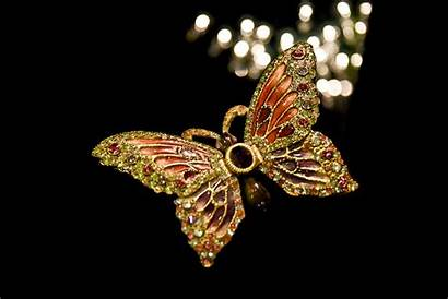 Butterfly Jeweled Turquoise Publicdomainpictures