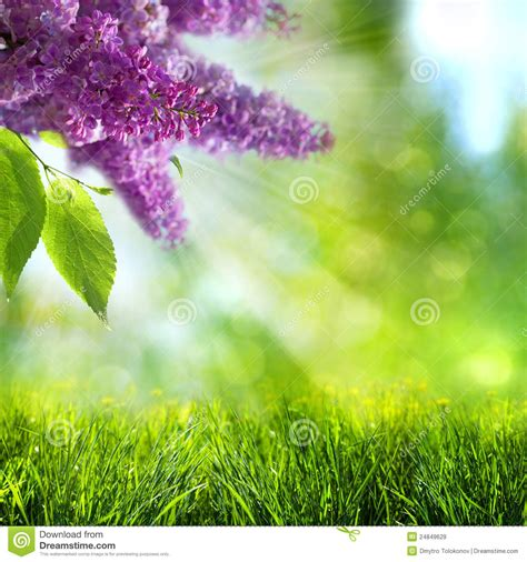 abstract summer  spring backgrounds royalty  stock