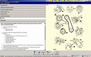 06 Ford Focus Belt Diagram  06  Free Engine Image For User Manual Download