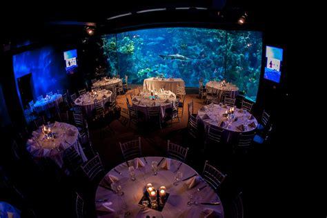 florida aquarium unique downtown tampa wedding venue