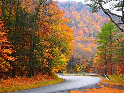mohawk trail state forest hawley massachusetts
