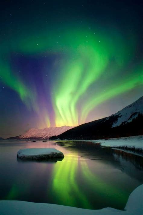 where are the northern lights 19 best images about northern lights on