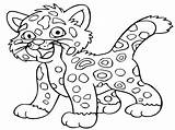 Coloring Animal Pages Leopard Cartoon sketch template