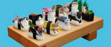 sushi cats felines dress up with seaweed and rice for sushi cats series