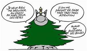Le Sapin A Les Boules : bient t 2013 le blog de dabo2allmountain ~ Preciouscoupons.com Idées de Décoration