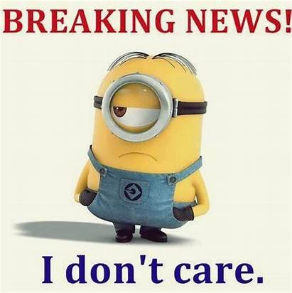 Trending Memes Minions Funniest Minion Quotes Humor
