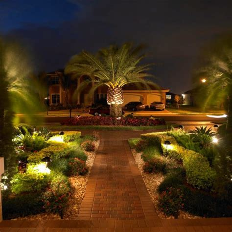 exceptional ideas  decorate  landscape  palm trees