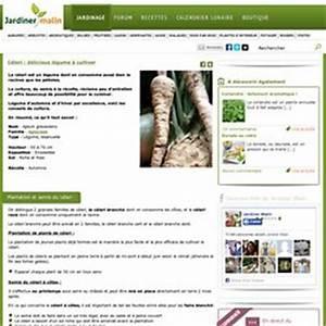 Culture Celeri Branche : l gumes fruit pearltrees ~ Melissatoandfro.com Idées de Décoration