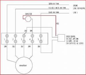 Ceiling fan speed switch wiring diagram ewiring