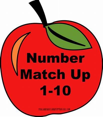Apple Number Match Activity Clipart Numbers Preschool