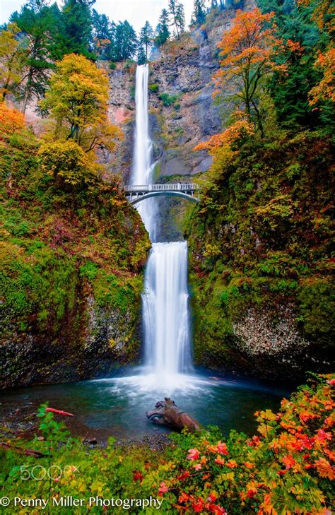 falls multnomah oregon waterfalls waterfall autumn november fall gorge usa late dc early road columbia scenic landscape fountain trip 500px