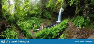A, Waterfall, With, A, Bridge, In, Deep, Forest, Cascades, Is