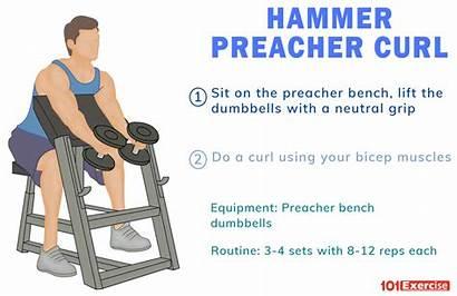Curl Hammer Preacher Alternative Tips Exercises