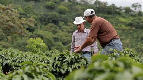 Responsibly Grown and Fair Trade Coffee   Starbucks Coffee Company