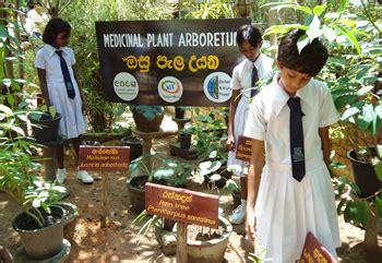 conservation  medicinal plants nagenahiru foundation