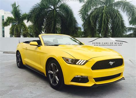 Car Rentals At Of Miami by 187 Ford Mustang Rental Miami