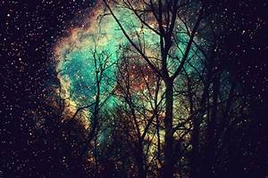 galaxy trees | Tumblr