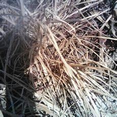 Traitement Mauvaise Herbe : glyphovert agricom ~ Melissatoandfro.com Idées de Décoration