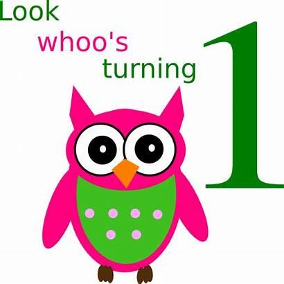 Birthday Owl Clip Clipart Vector Clker Royalty