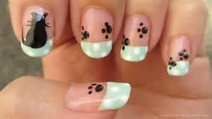 cat nails real asian kitten and paws nail