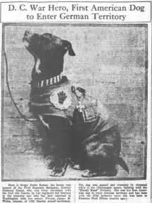 World War I Hero Dog