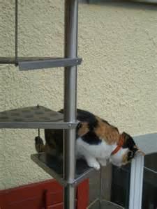 treppe gebraucht meow die katzenwelt stitch sancho pooh sternchen kyra alles für die katze