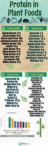 Diet Chart For Weight Loss For Non Vegetarian Plant Based Eating Fruit Diet Diet And Nutrition Plant