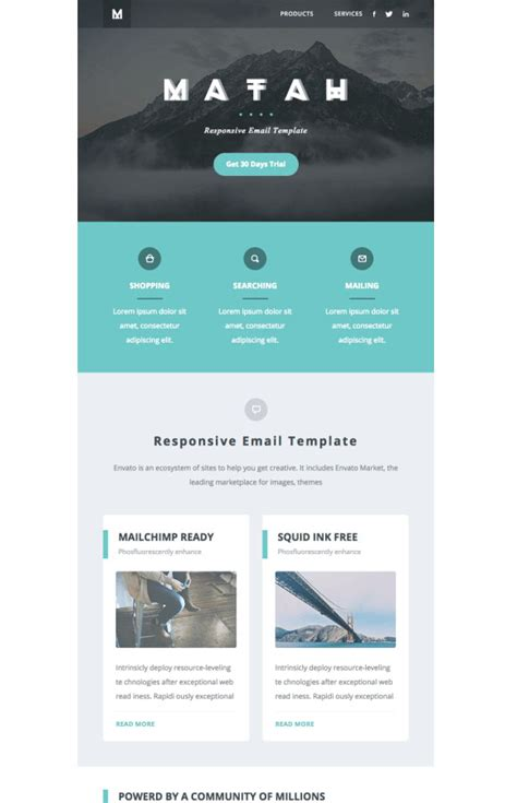 email newsletter examples    ideas   design