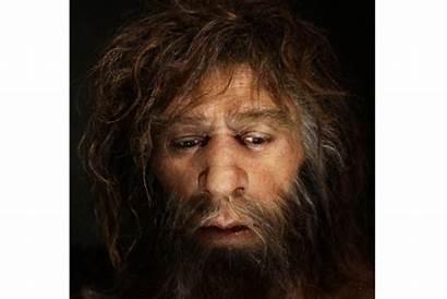 Neanderthal Humans Modern Chromosomes Human Csmonitor Dna