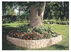 Ideas Garden Ideas Landscaping Ideas Tree Gardening Ideas Outdoor Wall Landscape Edging Ideas Around Trees Landscaping Gardening Ideas Ideas For Landscaping Under Pine Trees In The Yard More Backyard Ideas 30 Unique Garden Benches Adding Inviting And Decorative Accents To