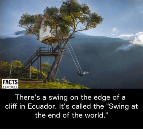 Swing Facts by Facts Factory There S A Swing On The Edge Of A Cliff In