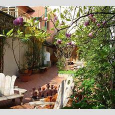 Vienna Hostel Ruthensteiner  Our Garden  A Green Place