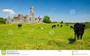 Ruins of Ancient Irish Churches