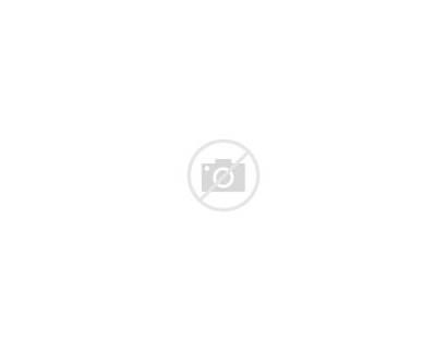 Husky Labels Siberian Address