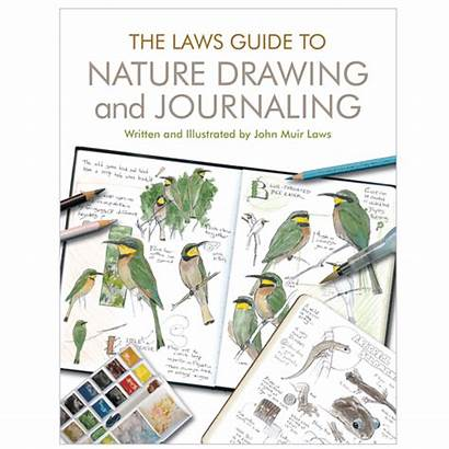 Nature Drawing Guide Laws Journaling Books Study