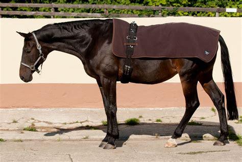 Back On Track Rückenwärmer Pferd