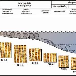 Nine Facies Based On Borehole Image  Bhi  Log