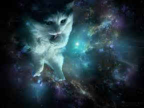 space cats spacecat blue wallpapers by alkven on deviantart